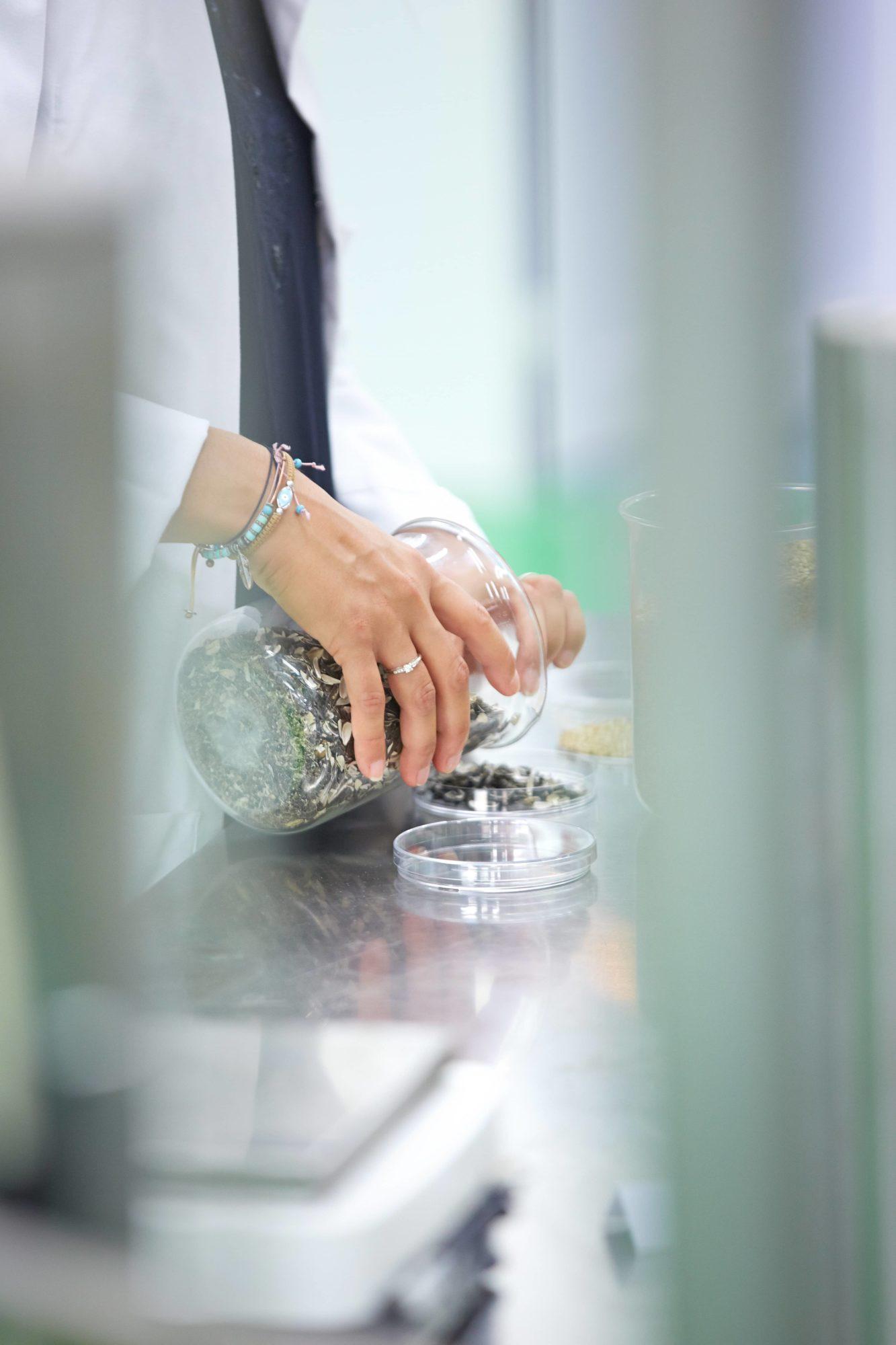 extraction végétale