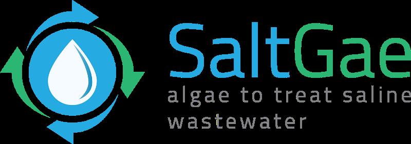 Projet SaltGae